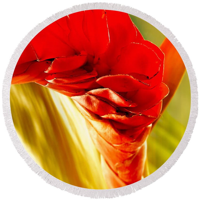 Flowers Round Beach Towel featuring the photograph Photograph Of A Red Ginger Flower by Perla Copernik