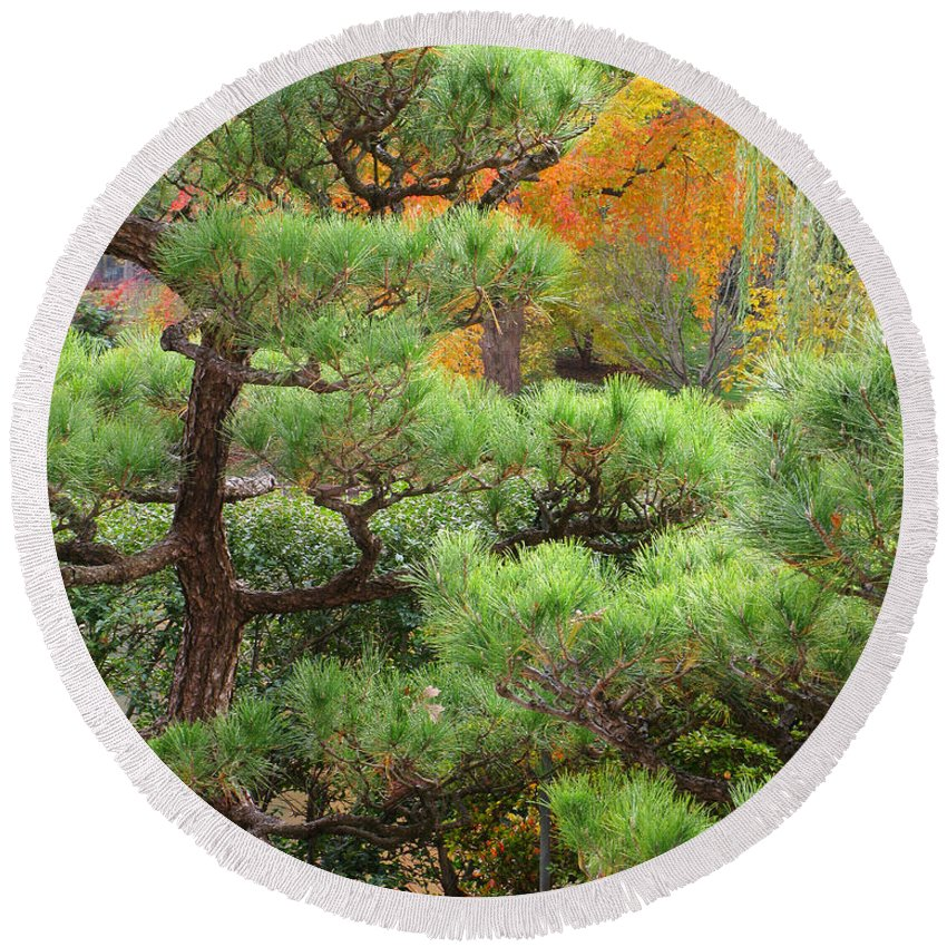 Pine Round Beach Towel featuring the photograph Pine And Autumn Colors In A Japanese Garden II by Greg Matchick