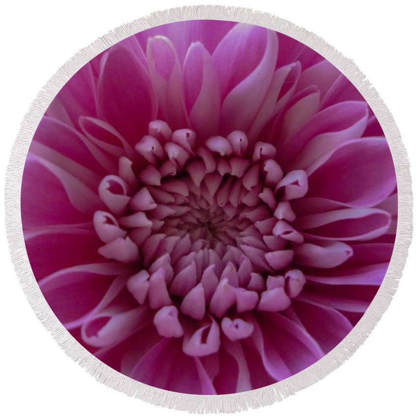 Pink Flower Round Beach Towel featuring the photograph Pink Flower by Dawn OConnor