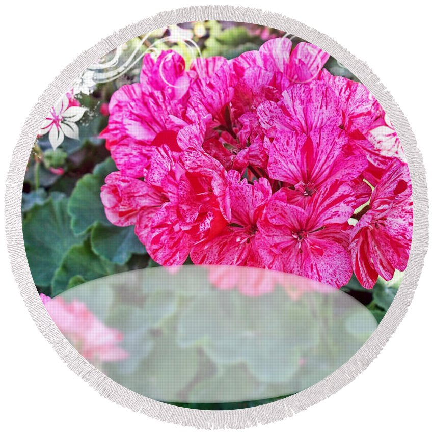 Nature Round Beach Towel featuring the photograph Pink Geranium Greeting Card Blank by Debbie Portwood