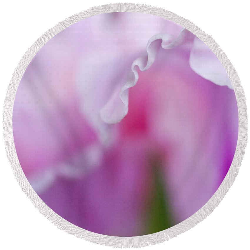 Gladiola Round Beach Towel featuring the photograph Pink Gladiola Ruffles by Kathy Clark