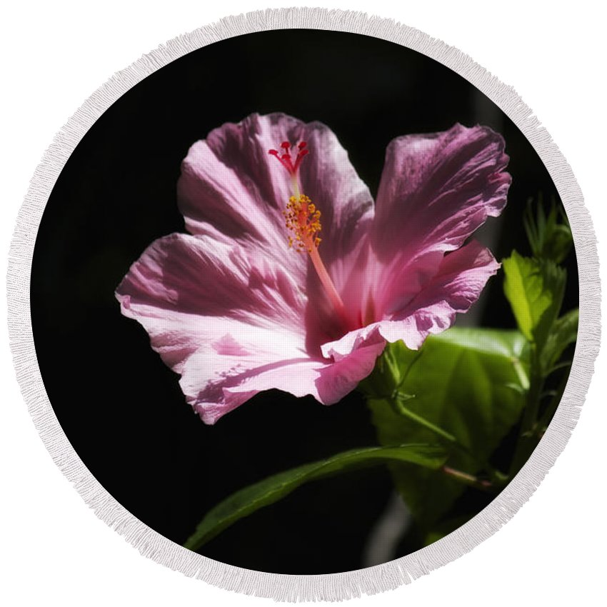 Florals Round Beach Towel featuring the photograph Pink Hibiscus by Linda Dunn