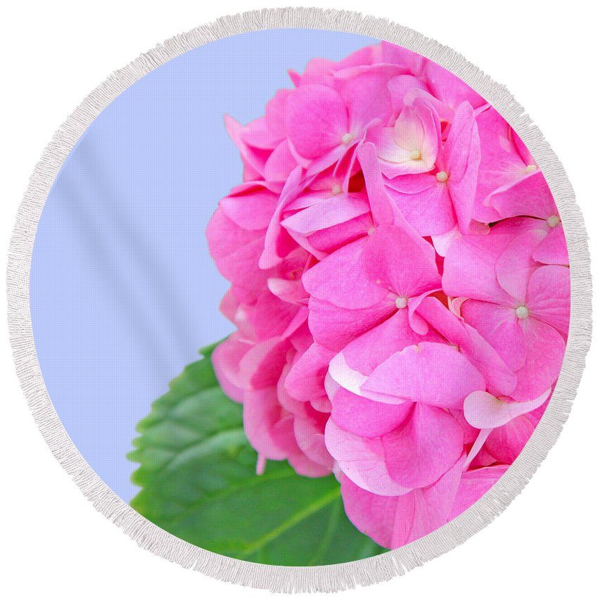 Hydrangea Round Beach Towel featuring the photograph Pink Hydrangea by Susan Wall