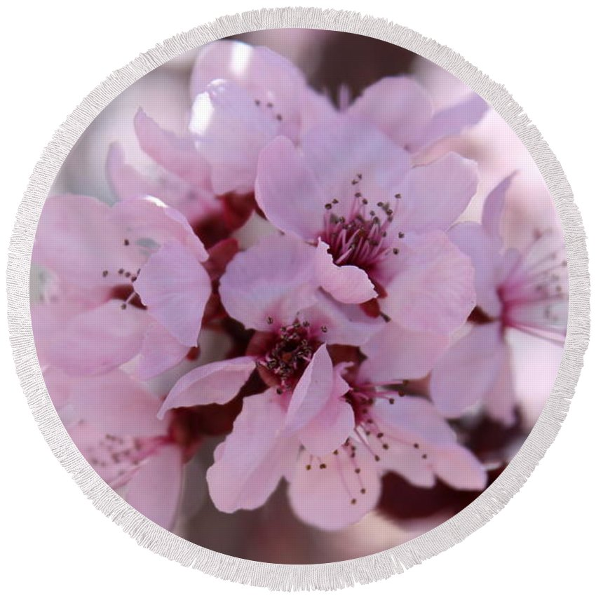 Floral Round Beach Towel featuring the photograph Plum Blossoms 4 by Kume Bryant