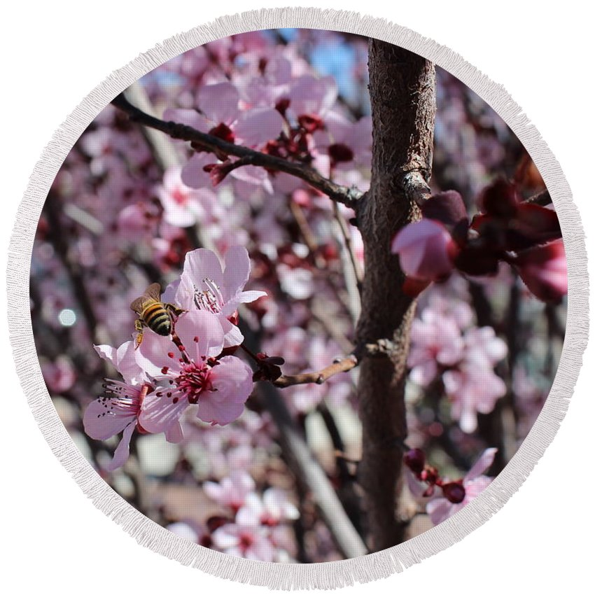 Floral Round Beach Towel featuring the photograph Plum Blossoms 6 by Kume Bryant