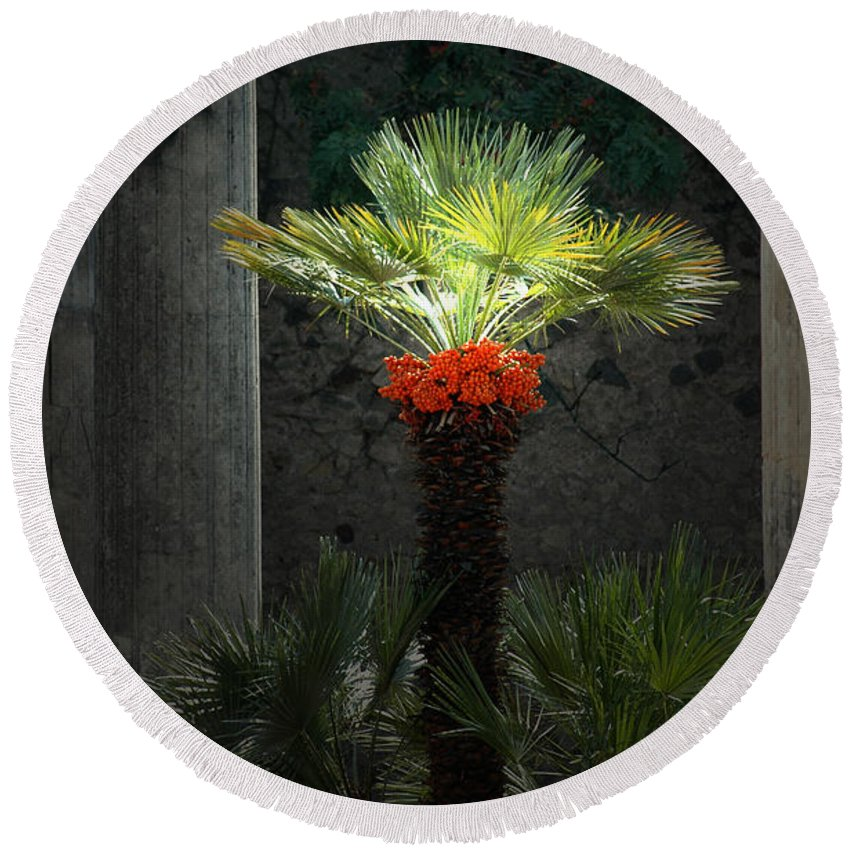 Pompeii Round Beach Towel featuring the photograph Pompeii Palm Tree Italy by Mike Nellums