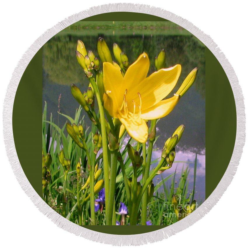 Lily Round Beach Towel featuring the photograph Pond Lily by Leone Lund