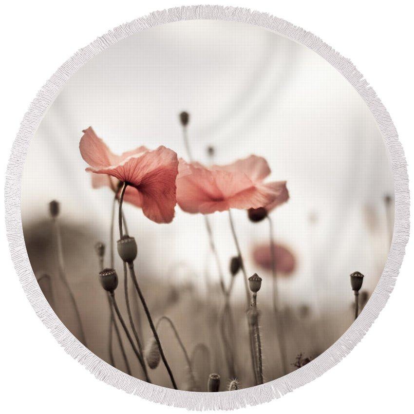 Poppy Round Beach Towel featuring the photograph Poppy Flowers 03 by Nailia Schwarz
