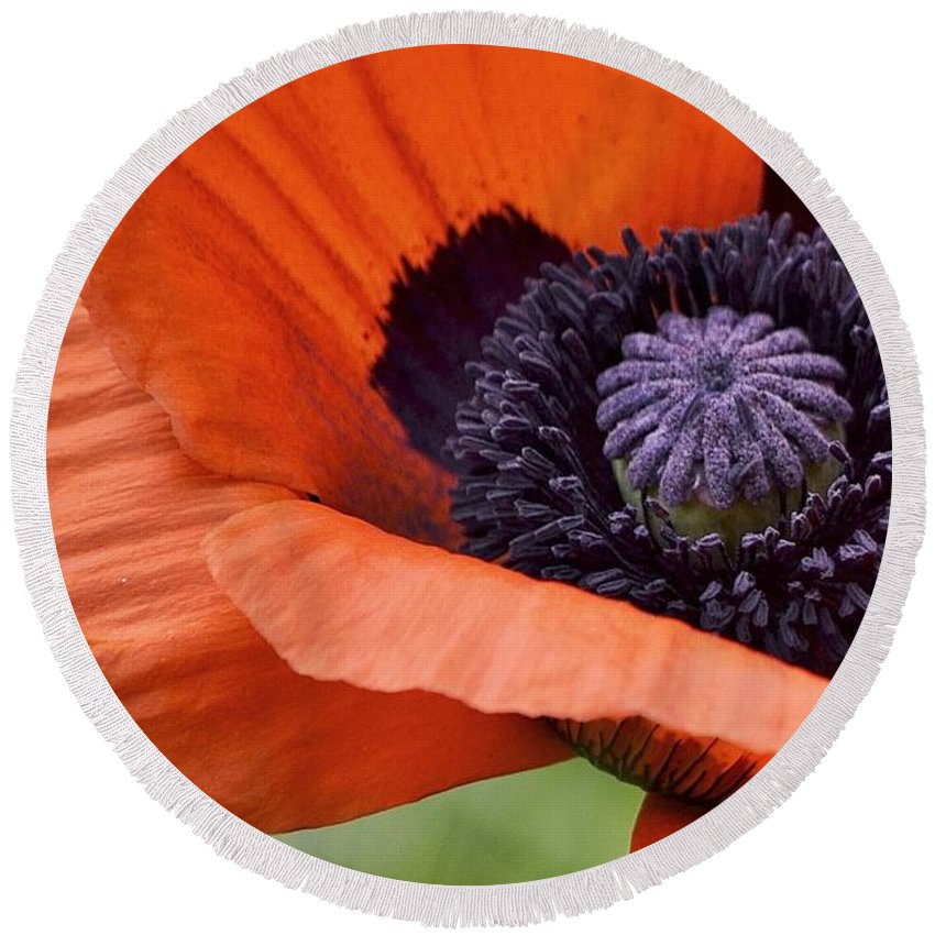 Poppy Round Beach Towel featuring the photograph Poppy For Peace by Traci Cottingham