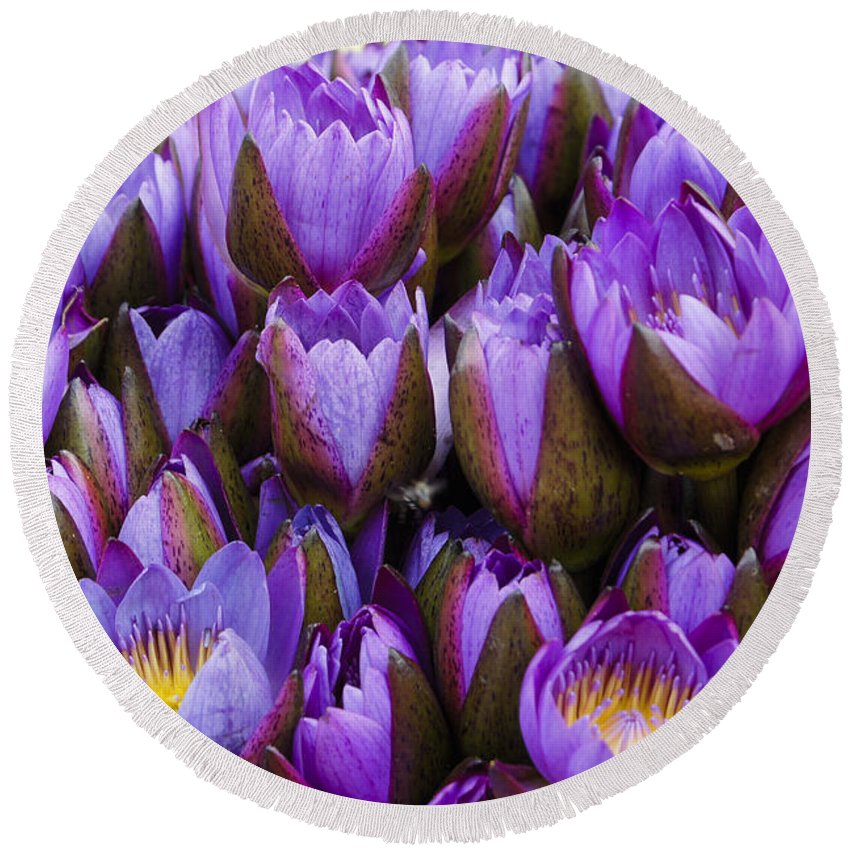 Flower Round Beach Towel featuring the photograph Purple Lotus by Michele Burgess