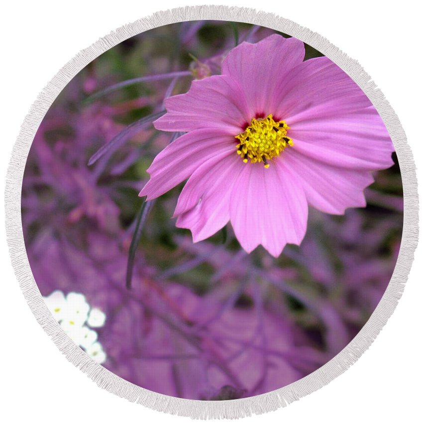 Flower Round Beach Towel featuring the photograph Purple Statement by Ian MacDonald
