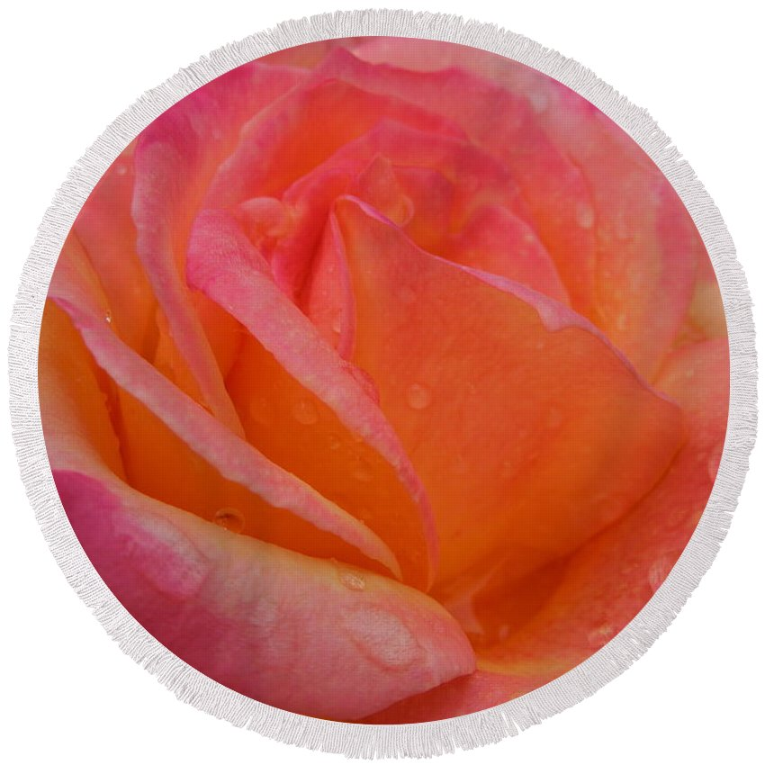 Flowers Round Beach Towel featuring the photograph Raindrops On Roses Nine by Diana Hatcher