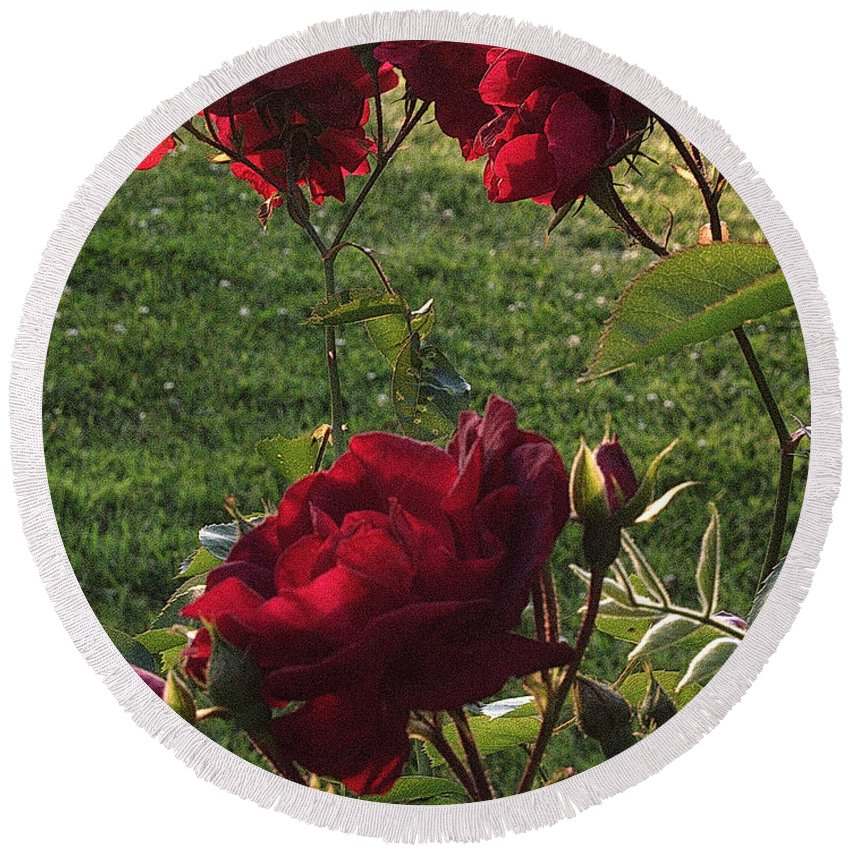 Red Round Beach Towel featuring the photograph Red Roses by Mel Hensley