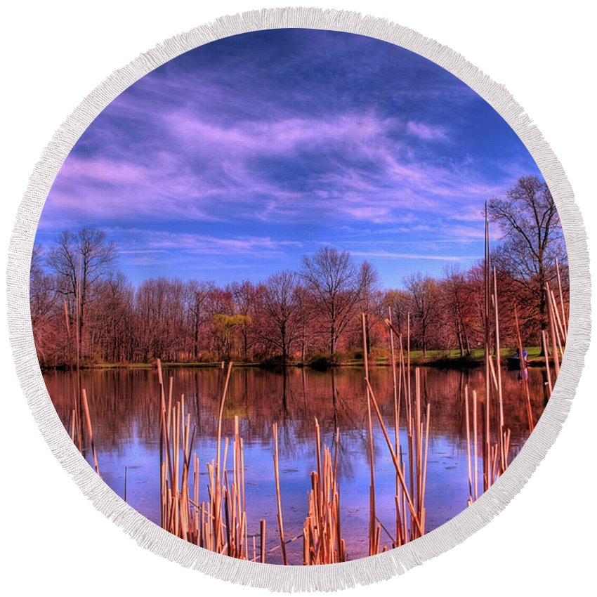 Reeds Round Beach Towel featuring the photograph Reeds by Paul Ward