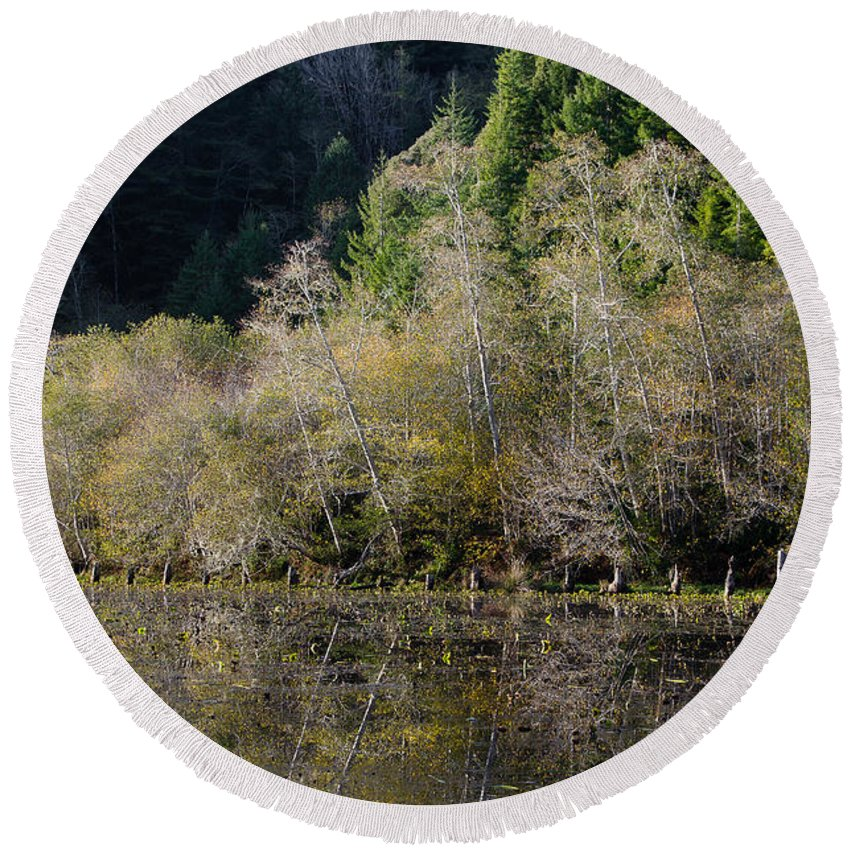 Redwood National Park Round Beach Towel featuring the photograph Reflections On Marshall Pond by Greg Nyquist