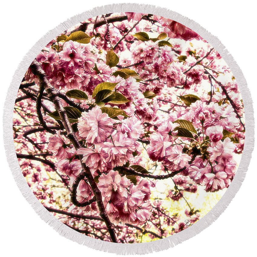 Floral Round Beach Towel featuring the photograph Romantic Cherry Blossoms by Georgiana Romanovna
