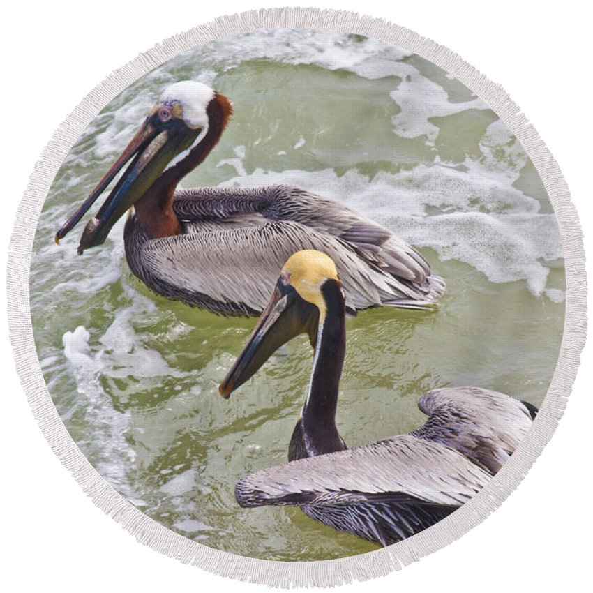 Pelican Round Beach Towel featuring the photograph Save Some For Me by Betsy Knapp