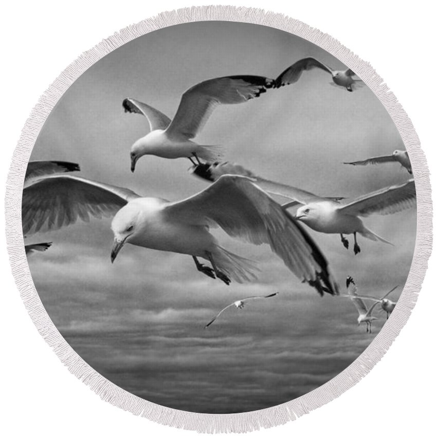 Sea Round Beach Towel featuring the photograph Sea Gull Scavengers by Randall Nyhof