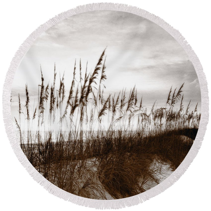 Absence Round Beach Towel featuring the photograph Sea Oats 1 by Skip Nall