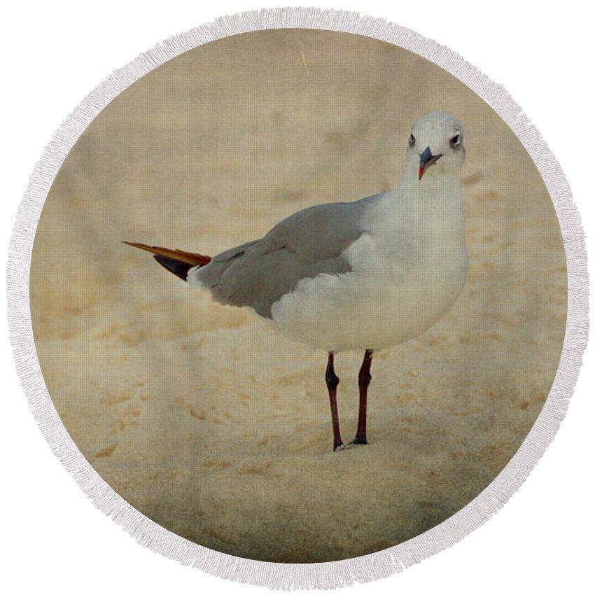 Bird Round Beach Towel featuring the photograph Gull by Sandy Keeton