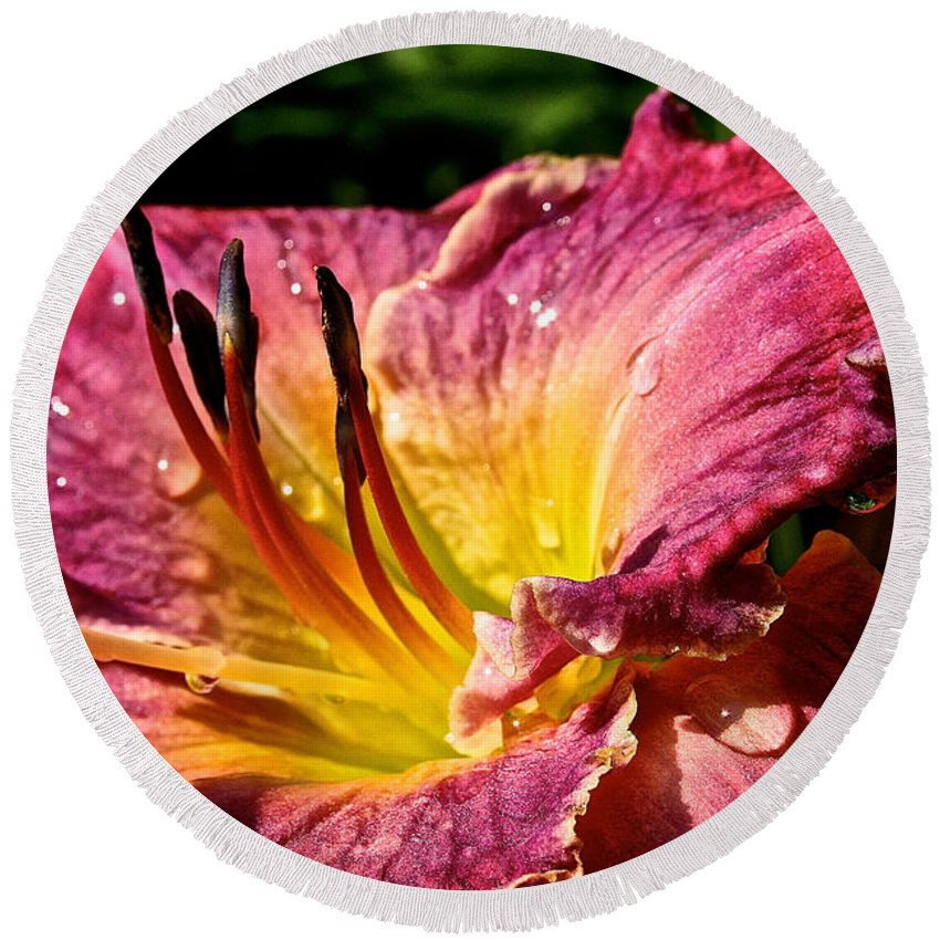 Plant Round Beach Towel featuring the photograph Seven Seals Daylily by Susan Herber