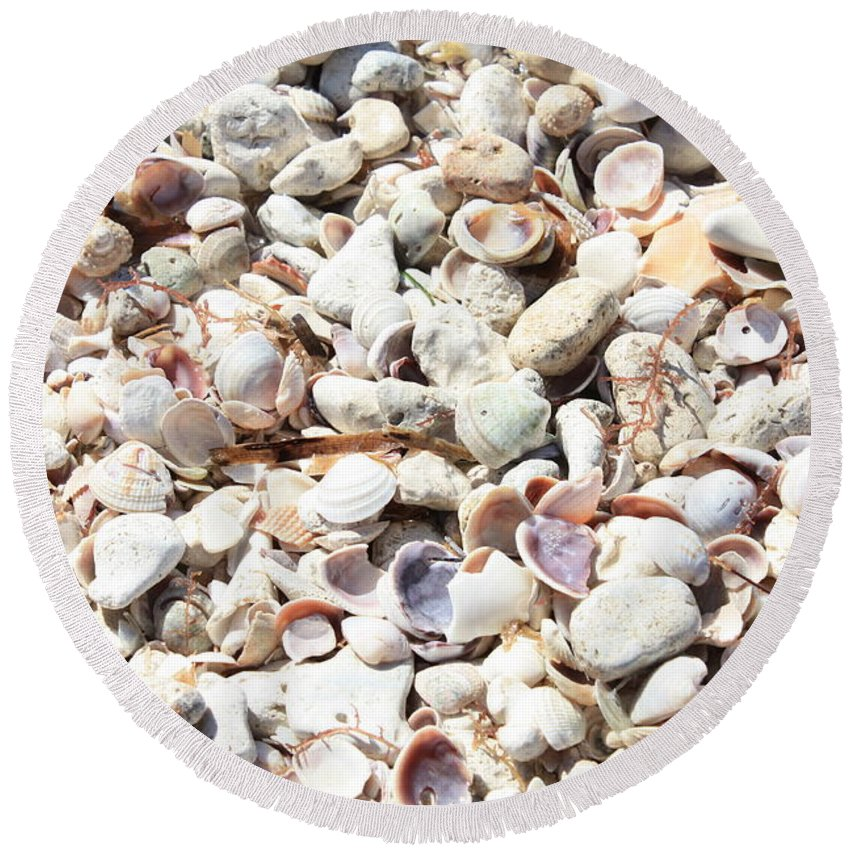 Shells Round Beach Towel featuring the photograph Shells by Carol Groenen