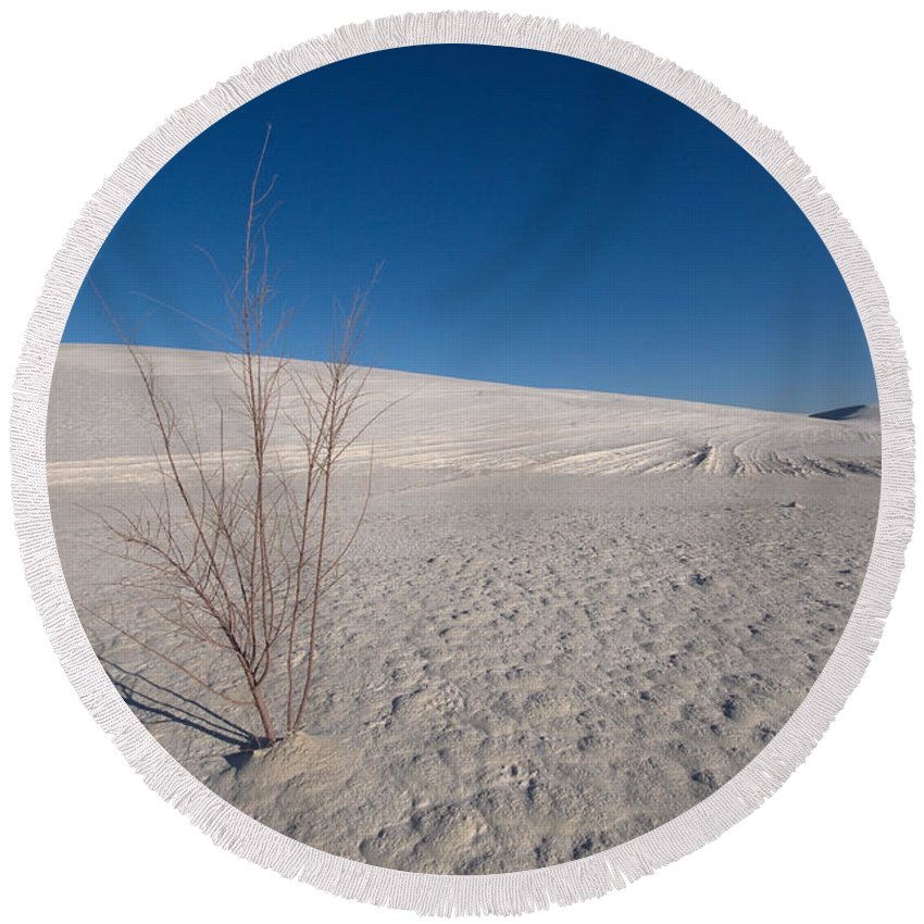 New Mexico Round Beach Towel featuring the photograph Single Bush 2 by Sean Wray