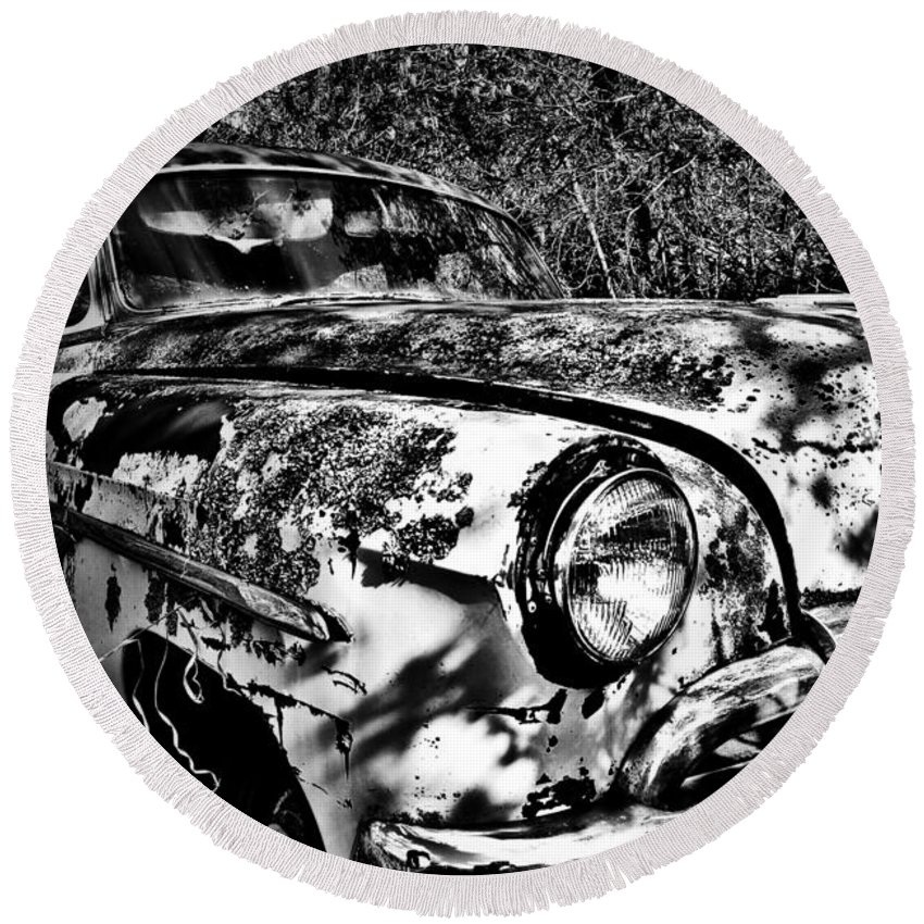 Well Round Beach Towel featuring the photograph Sittin Pretty by The Artist Project