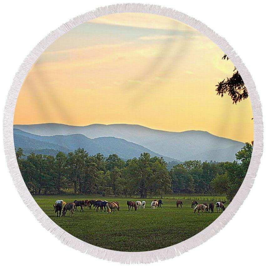 Smoky Mountain Round Beach Towel featuring the photograph Smoky Mountain Horse Herd by Randall Branham