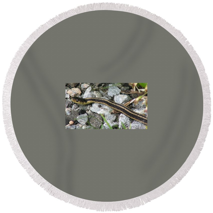 Garder Round Beach Towel featuring the photograph Snake by Art Dingo