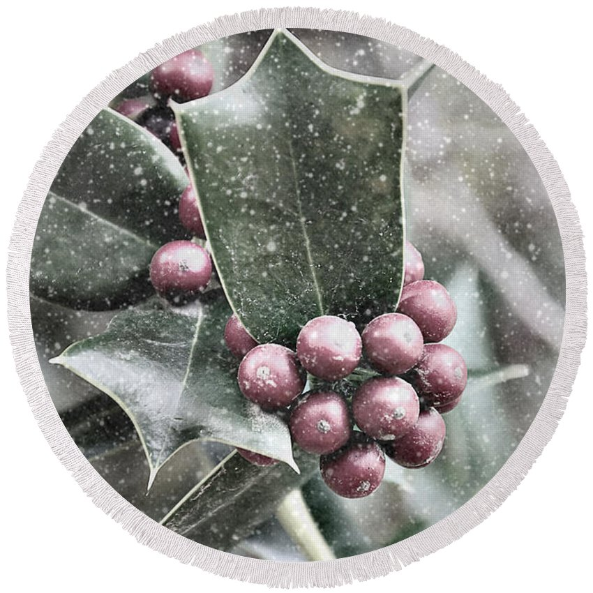 Snowy Round Beach Towel featuring the photograph Snowy Holly Christmas Card by Jim And Emily Bush