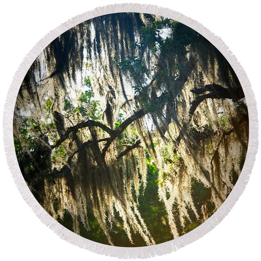 Spanish Round Beach Towel featuring the photograph Spanish Moss by Beth Gates-Sully