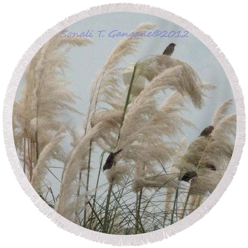 Shore View Round Beach Towel featuring the photograph Sparrows In Breeze by Sonali Gangane