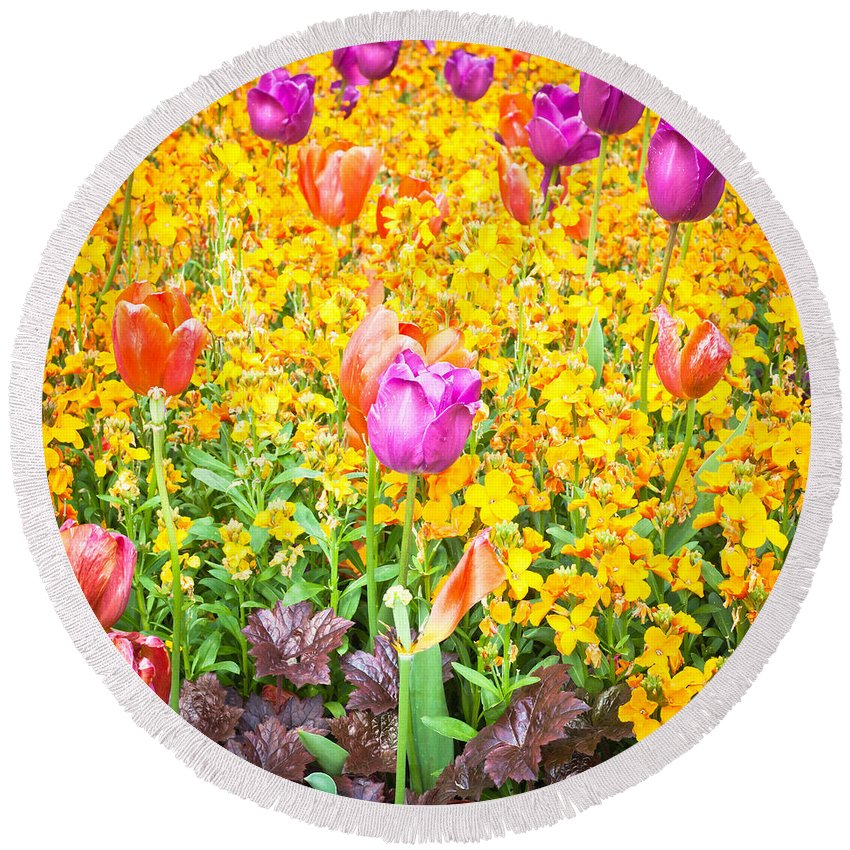 Background Round Beach Towel featuring the photograph Spring Flowers by Tom Gowanlock
