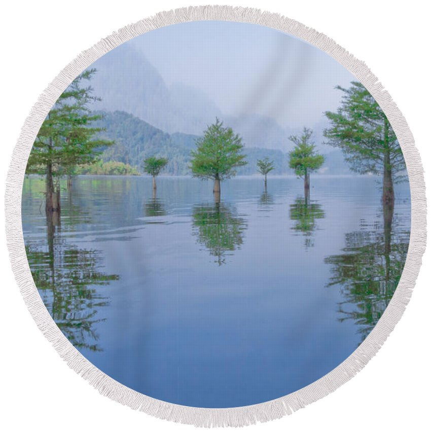 Appalachia Round Beach Towel featuring the photograph Spring Hanging Garden by Debra and Dave Vanderlaan