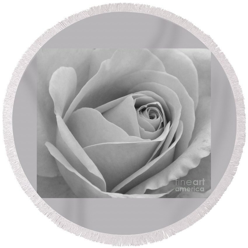 Rose Round Beach Towel featuring the photograph Study In Black And White by Cindy Manero