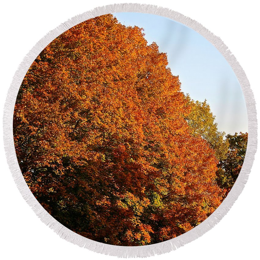 Outdoors Round Beach Towel featuring the photograph Sugar Maple by Susan Herber