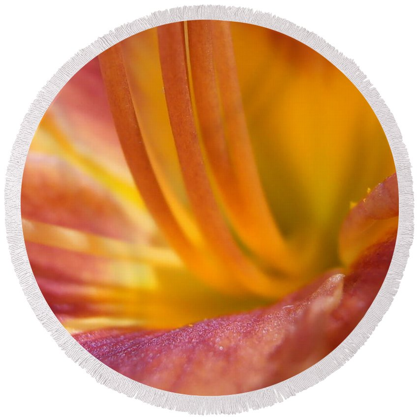Flower Round Beach Towel featuring the photograph Summer Stamen by Kimberly Perry