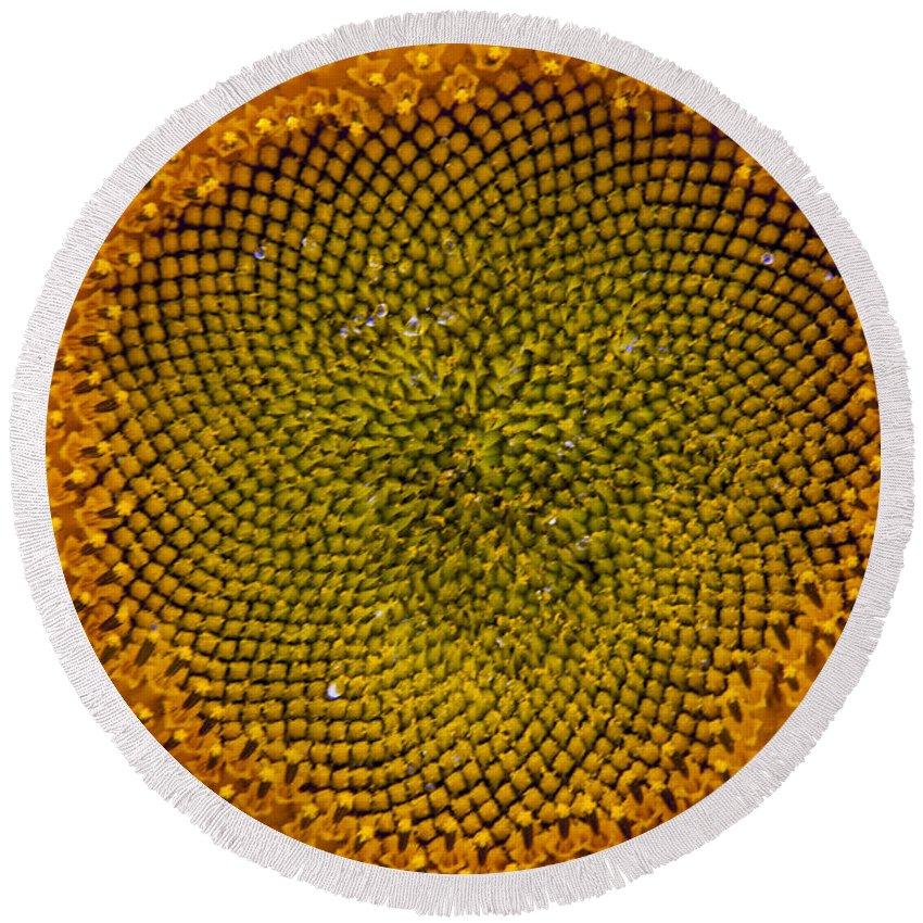 Sunflower Round Beach Towel featuring the photograph Sunflower Center by Darleen Stry