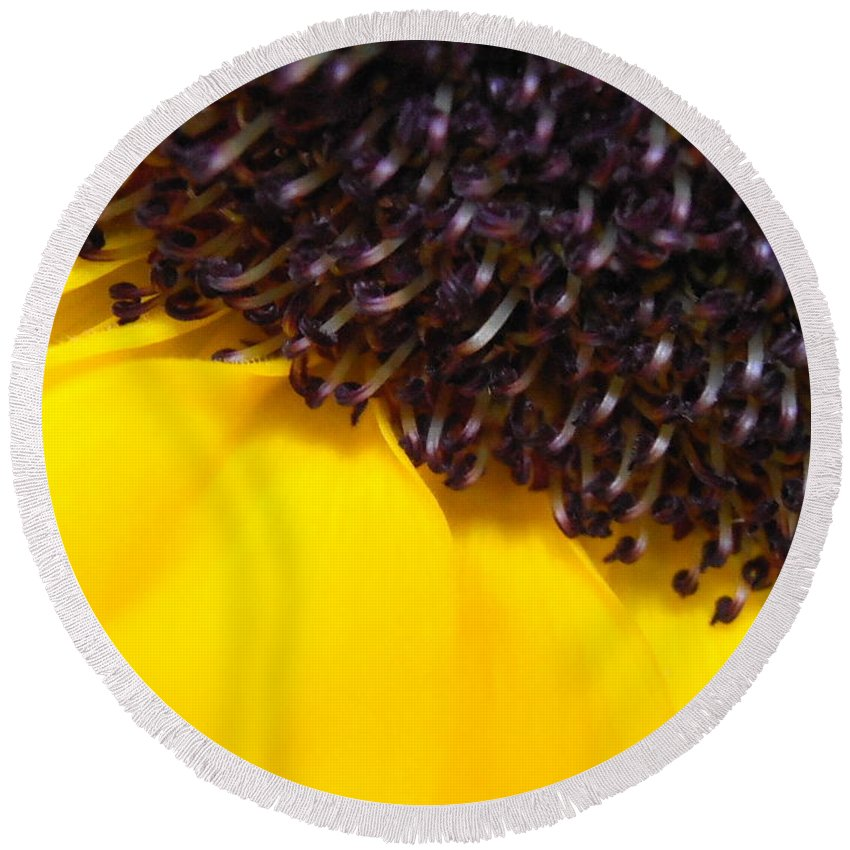 Sunflower Round Beach Towel featuring the photograph Sunflower Macro by Kimberly Perry