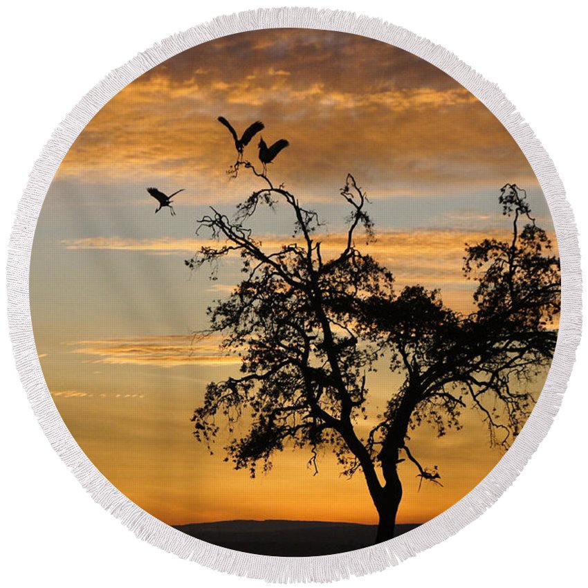 Africa Round Beach Towel featuring the photograph Sunrise Silhouette by Michele Burgess