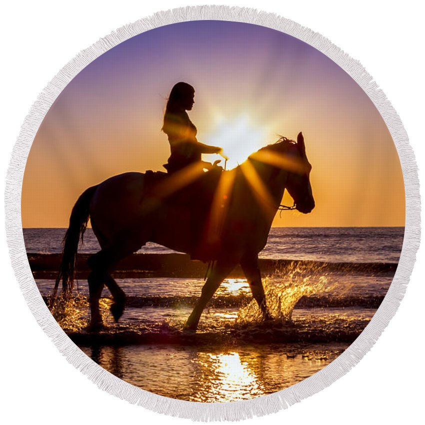 Horse Round Beach Towel featuring the photograph Taking In The Sun by Janet Fikar