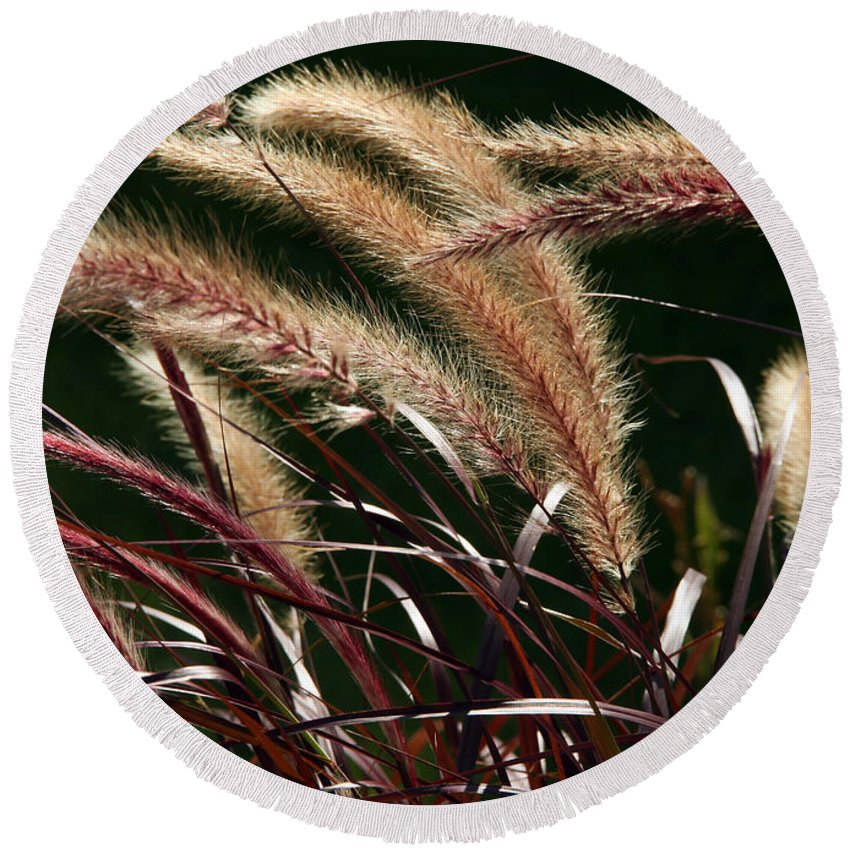 Color Round Beach Towel featuring the photograph Tall Grass by Jim Nelson