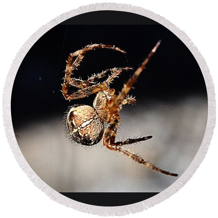 Spider Round Beach Towel featuring the photograph Tending The Web Invisible by Chriss Pagani