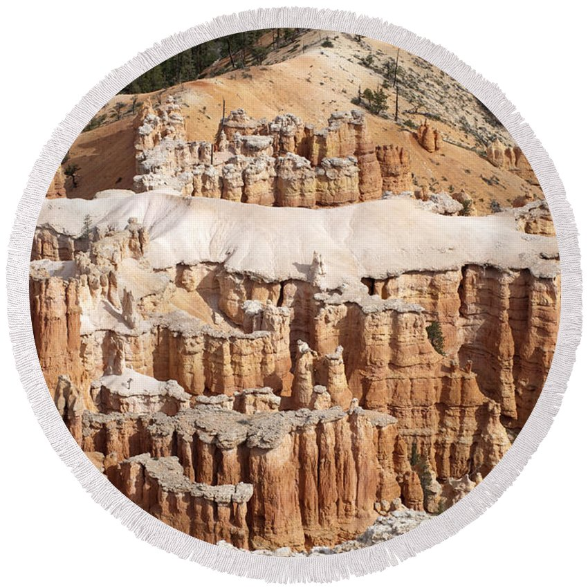 Landscape Round Beach Towel featuring the photograph The Allligator by Sandra Bronstein