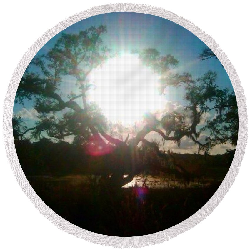 Wekiva Round Beach Towel featuring the photograph The Burning Tree by Stefan Duncan