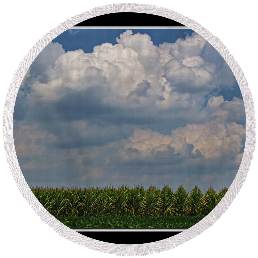 Round Beach Towel featuring the photograph The Corn Is Thirsty by Debbie Portwood