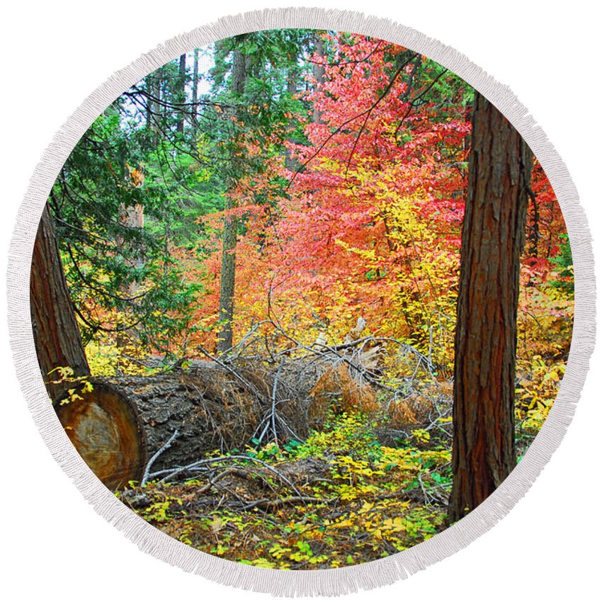 Sequoia National Park Round Beach Towel featuring the photograph The Fallen by Lynn Bauer