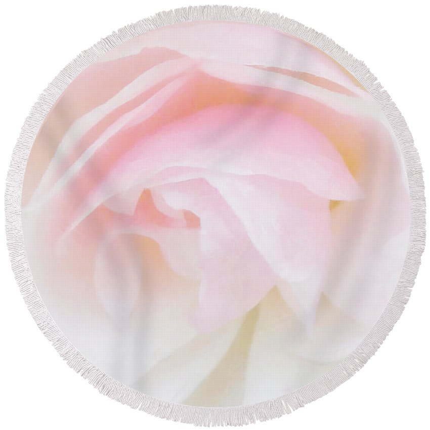 Soft Round Beach Towel featuring the photograph The Fragile Rose by Steve Taylor