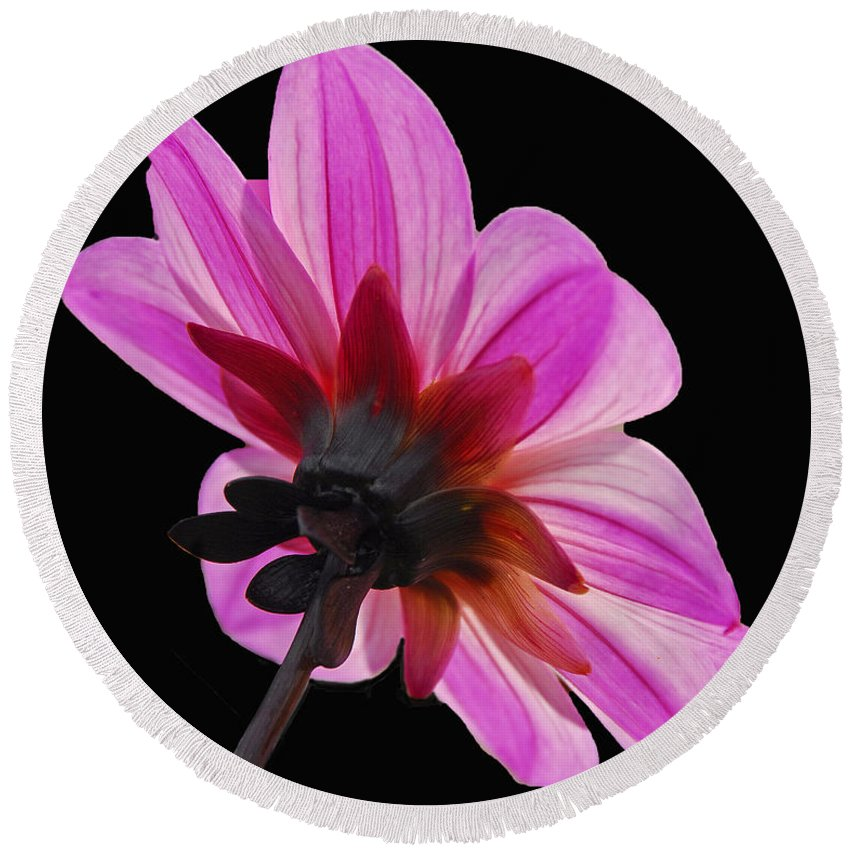 Flora Round Beach Towel featuring the photograph The Other Side Of The Floral by Cindy Manero